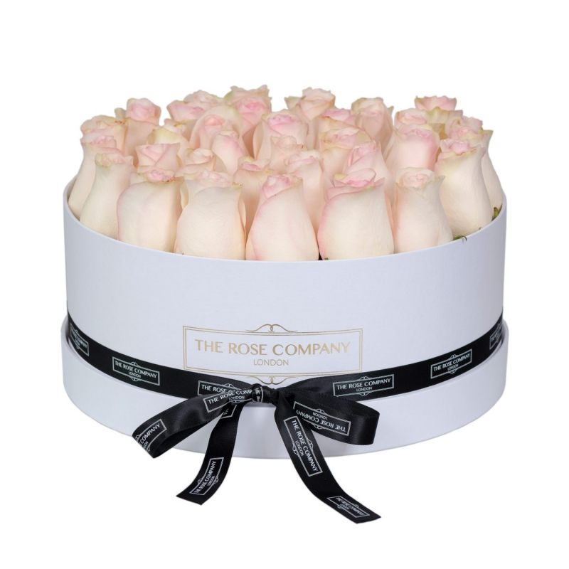 LARGE WHITE BOX - Light pink fresh roses