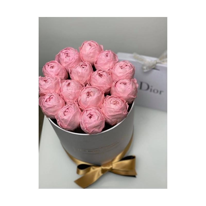Pink Infinity Peony - white small box