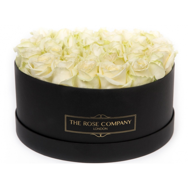 LARGE BLACK BOX - Cream fresh roses